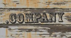 Nieuwe domeinextensies door uiteenlopende bedrijven opgepakt