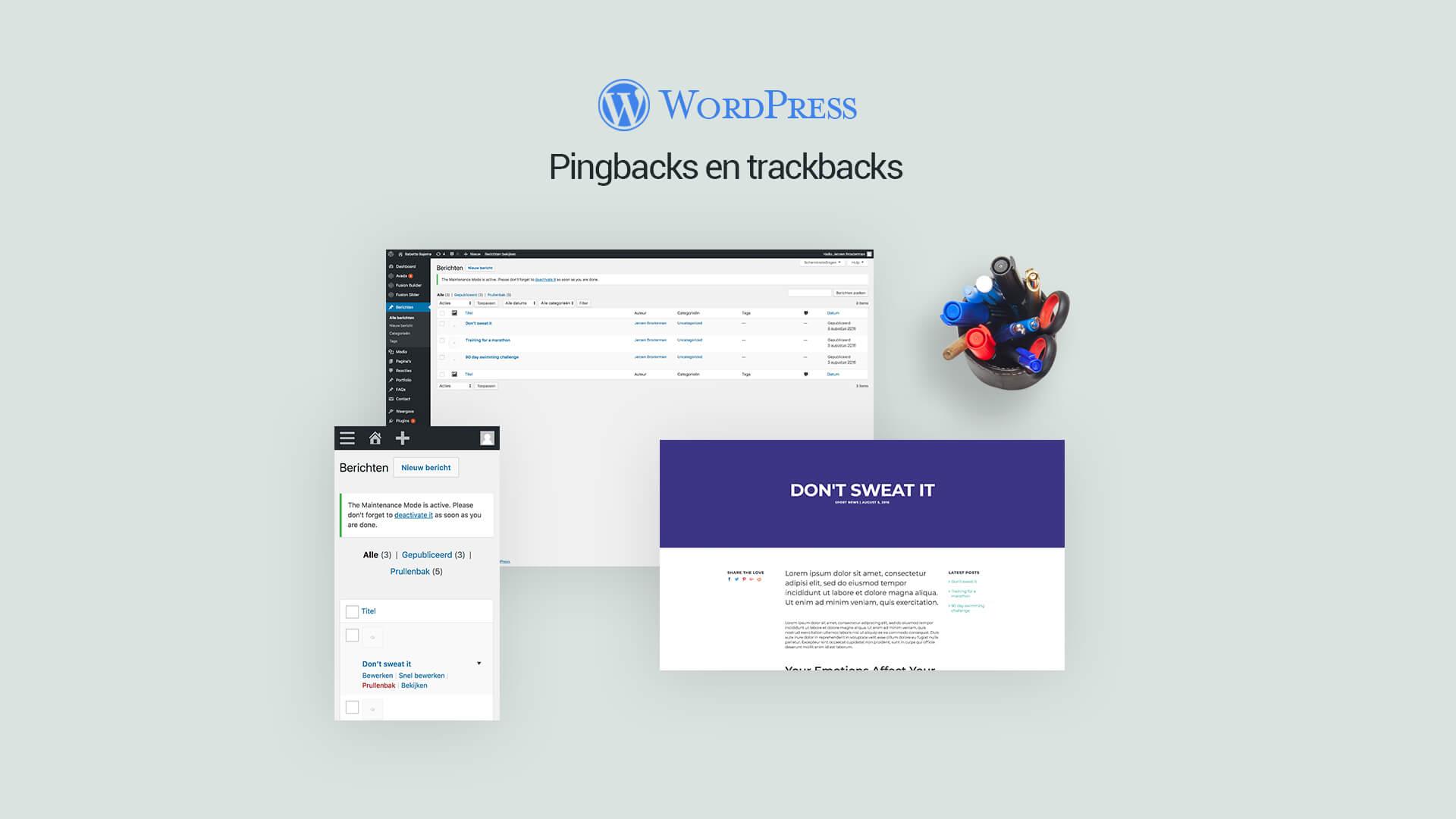 trackbacks en pingbacks
